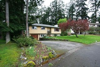 Photo 15: 6752 Jedora Dr in Central Saanich: Residential for sale : MLS®# 277166