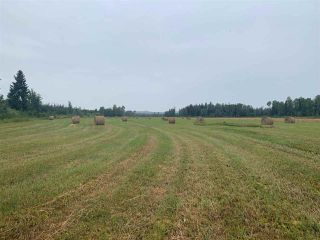 Main Photo: 6182 NAZKO Road: Bouchie Lake Agri-Business for sale (Quesnel (Zone 28))  : MLS®# C8027374