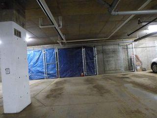 Photo 36: 415 1004 ROSENTHAL Boulevard in Edmonton: Zone 58 Condo for sale : MLS®# E4186273