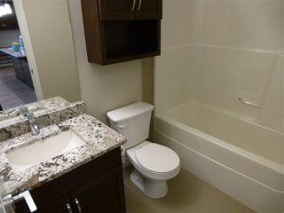 Photo 21: 415 1004 ROSENTHAL Boulevard in Edmonton: Zone 58 Condo for sale : MLS®# E4186273