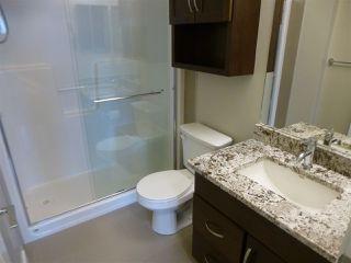 Photo 28: 415 1004 ROSENTHAL Boulevard in Edmonton: Zone 58 Condo for sale : MLS®# E4186273