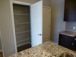 Photo 18: 415 1004 ROSENTHAL Boulevard in Edmonton: Zone 58 Condo for sale : MLS®# E4186273