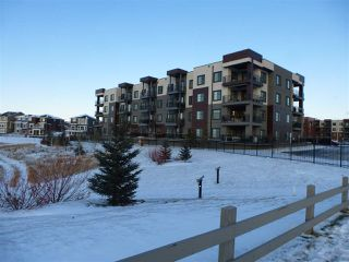 Photo 3: 415 1004 ROSENTHAL Boulevard in Edmonton: Zone 58 Condo for sale : MLS®# E4186273