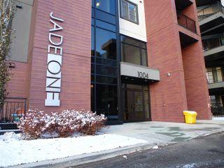 Photo 4: 415 1004 ROSENTHAL Boulevard in Edmonton: Zone 58 Condo for sale : MLS®# E4186273