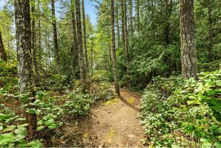 Photo 27: 2950 Michelson Rd in Sooke: Sk Otter Point House for sale : MLS®# 841918