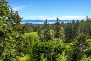Photo 20: 2950 Michelson Rd in Sooke: Sk Otter Point House for sale : MLS®# 841918