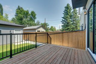 Photo 49: 244 21 Avenue NW in Calgary: Tuxedo Park Detached for sale : MLS®# A1016245