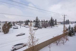 Photo 37: 353 7805 71 Street NW in Edmonton: Zone 17 Condo for sale : MLS®# E4221409