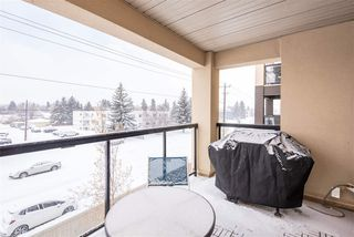 Photo 33: 353 7805 71 Street NW in Edmonton: Zone 17 Condo for sale : MLS®# E4221409