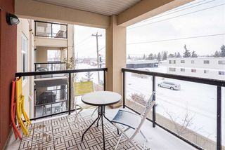 Photo 34: 353 7805 71 Street NW in Edmonton: Zone 17 Condo for sale : MLS®# E4221409