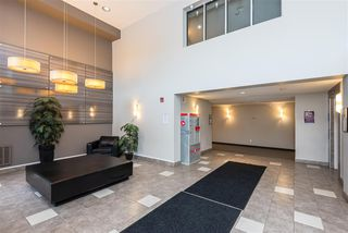Photo 5: 353 7805 71 Street NW in Edmonton: Zone 17 Condo for sale : MLS®# E4221409