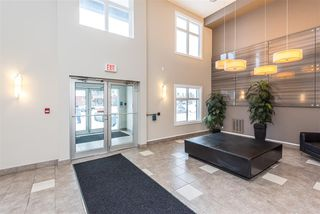 Photo 4: 353 7805 71 Street NW in Edmonton: Zone 17 Condo for sale : MLS®# E4221409