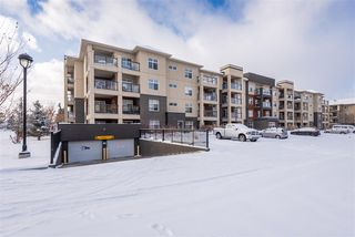 Photo 3: 353 7805 71 Street NW in Edmonton: Zone 17 Condo for sale : MLS®# E4221409