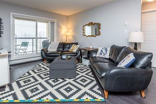 Photo 16: 353 7805 71 Street NW in Edmonton: Zone 17 Condo for sale : MLS®# E4221409