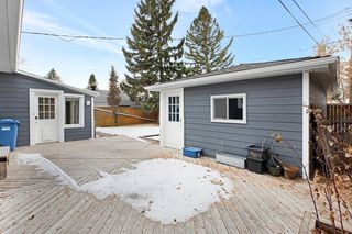 Photo 28: 117 Havenhurst Crescent SW in Calgary: Haysboro Detached for sale : MLS®# A1052524