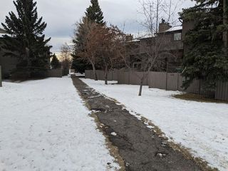 Photo 14: 100 23 Glamis Drive SW in Calgary: Glamorgan Row/Townhouse for sale : MLS®# A1056750