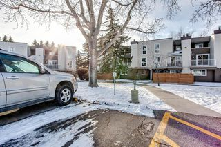 Photo 21: 1309 13104 Elbow Drive SW in Calgary: Canyon Meadows Row/Townhouse for sale : MLS®# A1056730