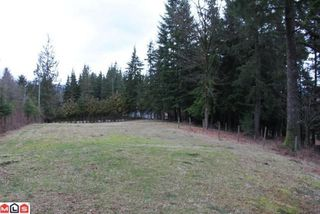 Photo 9: 29919 DEWDNEY TRUNK RD in Mission: House for sale : MLS®# F1103492