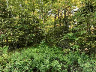 Photo 11: B-79 & B-1 Beamish Road in East Uniacke: 105-East Hants/Colchester West Vacant Land for sale (Halifax-Dartmouth)  : MLS®# 202004604