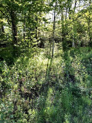 Photo 3: B-79 & B-1 Beamish Road in East Uniacke: 105-East Hants/Colchester West Vacant Land for sale (Halifax-Dartmouth)  : MLS®# 202004604