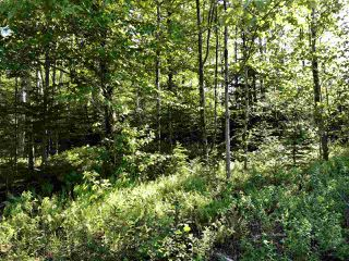 Photo 2: B-79 & B-1 Beamish Road in East Uniacke: 105-East Hants/Colchester West Vacant Land for sale (Halifax-Dartmouth)  : MLS®# 202004604
