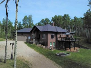 Photo 40: 1A 54106 RGE RD 275: Rural Parkland County House for sale : MLS®# E4199649