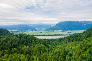Photo 5: 37855 BAKSTAD Road in Abbotsford: Sumas Mountain House for sale : MLS®# R2470212