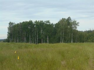 Photo 8: RR 222 Twp Rd. 504: Rural Leduc County Rural Land/Vacant Lot for sale : MLS®# E4203982