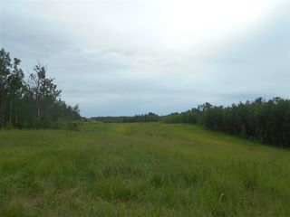 Photo 4: RR 222 Twp Rd. 504: Rural Leduc County Rural Land/Vacant Lot for sale : MLS®# E4203982