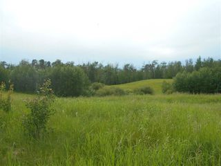 Photo 11: RR 222 Twp Rd. 504: Rural Leduc County Rural Land/Vacant Lot for sale : MLS®# E4203982
