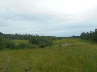 Photo 9: RR 222 Twp Rd. 504: Rural Leduc County Rural Land/Vacant Lot for sale : MLS®# E4203982