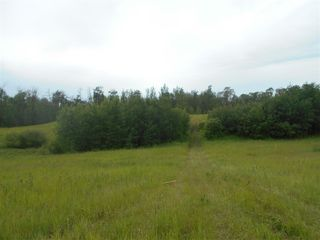 Photo 6: RR 222 Twp Rd. 504: Rural Leduc County Rural Land/Vacant Lot for sale : MLS®# E4203982