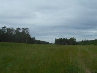 Photo 7: RR 222 Twp Rd. 504: Rural Leduc County Rural Land/Vacant Lot for sale : MLS®# E4203982