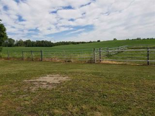 Photo 9: 51110 RGE RD 270 RD: Rural Parkland County House for sale : MLS®# E4212762