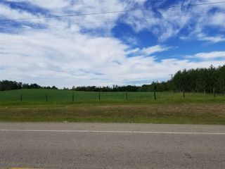 Photo 19: 51110 RGE RD 270 RD: Rural Parkland County House for sale : MLS®# E4212762