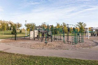 Photo 39: 8719 208 Street in Edmonton: Zone 58 House for sale : MLS®# E4216259