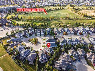 Photo 32: 8719 208 Street in Edmonton: Zone 58 House for sale : MLS®# E4216259