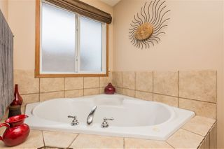 Photo 16: 8719 208 Street in Edmonton: Zone 58 House for sale : MLS®# E4216259