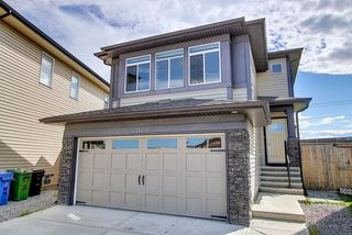 Main Photo: 244 Walden Mews SE in Calgary: Walden Detached for sale : MLS®# A1009161