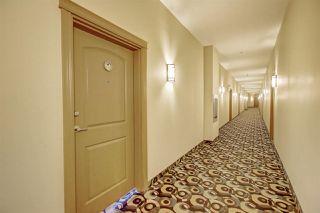 Photo 15: 244 10121 80 Avenue in Edmonton: Zone 17 Condo for sale : MLS®# E4206945