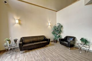 Photo 16: 244 10121 80 Avenue in Edmonton: Zone 17 Condo for sale : MLS®# E4206945