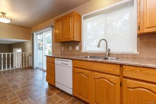 Photo 13: 1548 Eric Rd in : SE Mt Doug House for sale (Saanich East)  : MLS®# 856627