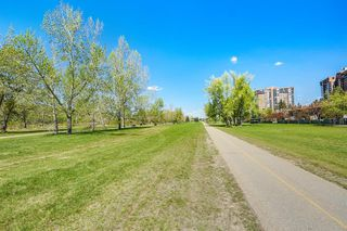 Photo 47: 256 Point Mckay Terrace NW in Calgary: Point McKay Row/Townhouse for sale : MLS®# A1047265