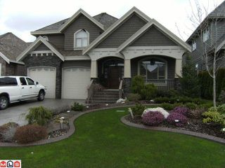 "Photo 1: 3118 162ND ST in Surrey: Grandview Surrey House for sale in ""MORGAN ACRES"" (South Surrey White Rock)  : MLS®# F1108748"