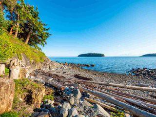 Photo 19: 6361 SUNSHINE COAST Highway in Sechelt: Sechelt District House for sale (Sunshine Coast)  : MLS®# R2411621