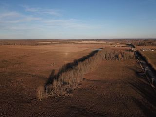 Photo 12: RR74 Twp 514: Rural Parkland County Rural Land/Vacant Lot for sale : MLS®# E4183439