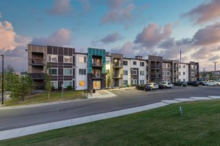 Photo 1: 310 8 Sage Hill Terrace NW in Calgary: Sage Hill Apartment for sale : MLS®# A1031642