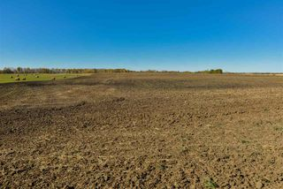 Photo 5: 51114 RGE RD 271: Rural Parkland County Rural Land/Vacant Lot for sale : MLS®# E4216659