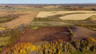 Photo 12: 51114 RGE RD 271: Rural Parkland County Rural Land/Vacant Lot for sale : MLS®# E4216659