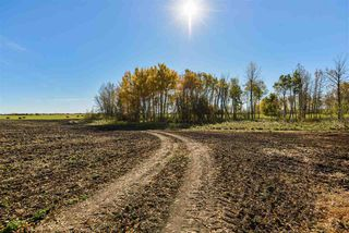 Photo 7: 51114 RGE RD 271: Rural Parkland County Rural Land/Vacant Lot for sale : MLS®# E4216659